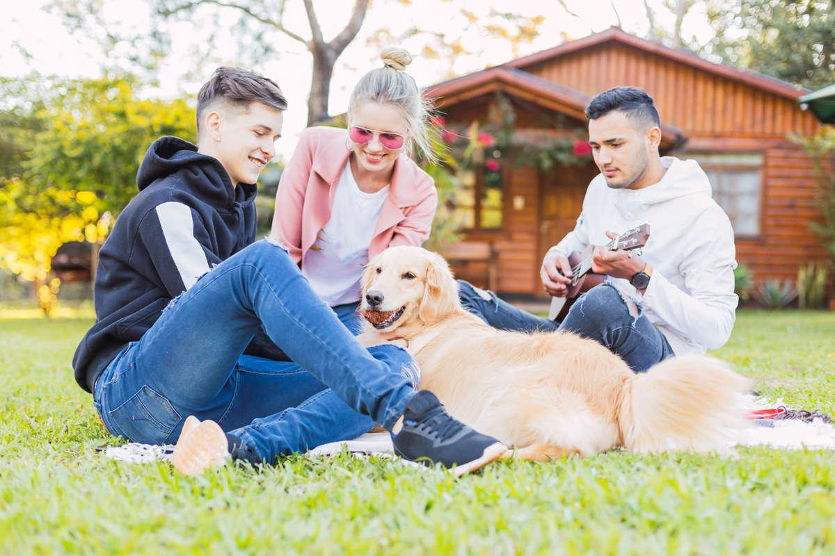 5 idee per andare in vacanza con il cane