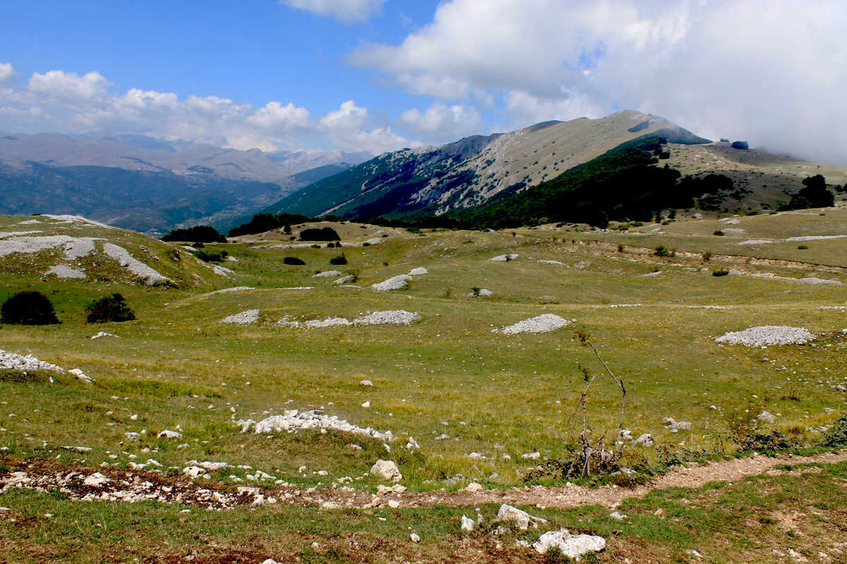 Alla scoperta del Parco Nazionale d'Abruzzo